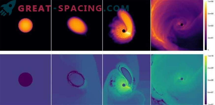 Un buco nero resuscita una nana bianca?