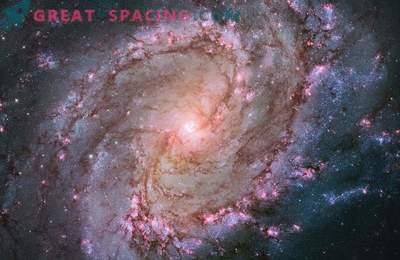 Das Hubble-Teleskop zeigte das Leben von Sternen in der South Pinwheel-Galaxie.