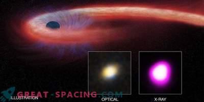 Ein supermassives Schwarzes Loch zerreißt einen unglücklichen Stern