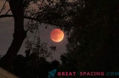 Der atemberaubende Blutmond traf die Welt: Foto