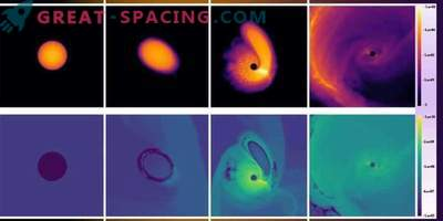 Space zombies! How black holes enliven the dead stars
