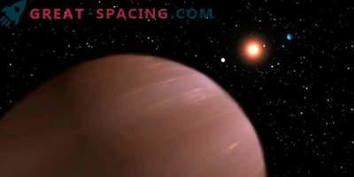 Ein Brauner Zwerg und ein Planet oder zwei Braune Zwerge?