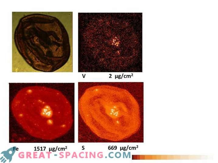 Vanadium wird dazu beitragen, das Leben des Mars zu entdecken.