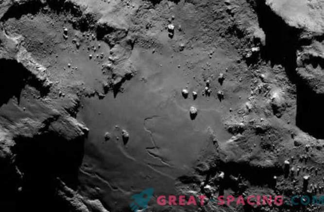 Astronomen: Leben kann auf dem Kometen 67P nachgewiesen werden