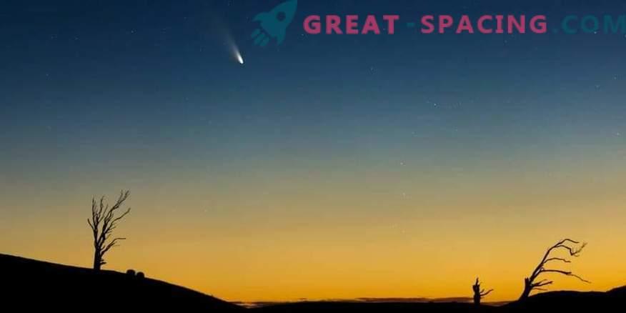 Verlangsamung der Kometenrotation bei Annäherung an die Erde