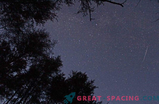 Live-Übertragung des Leonidischen Meteoritenschauers
